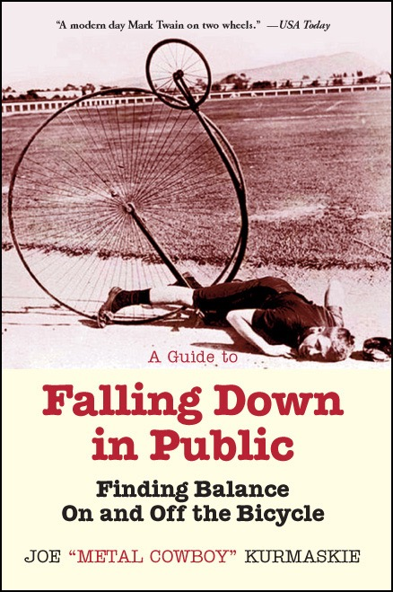 Guide_to_Falling Down_front_cover